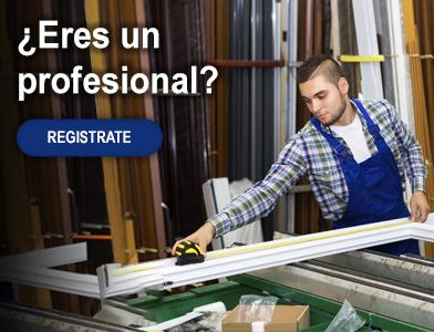 ¿Eres un profesional?